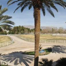 Шикарная вилла на большом участке земли в Лас-Вегасе с видом на горы